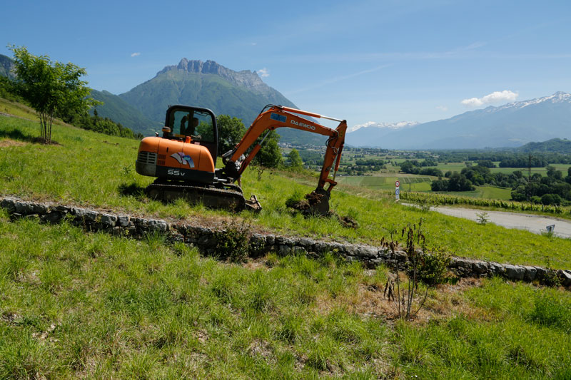 Sondage-plantation-2.jpg