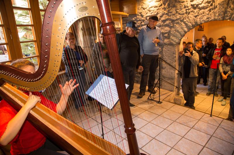 Portes-Ouvertes-Grisard-harpe.jpg
