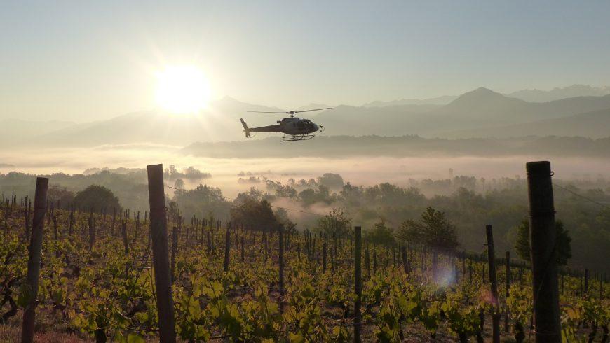 Esprit collectif chez les vignerons en Combe de Savoie !