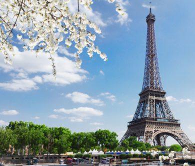 Mercredi 20 mars 2019: un vigneron à Paris!