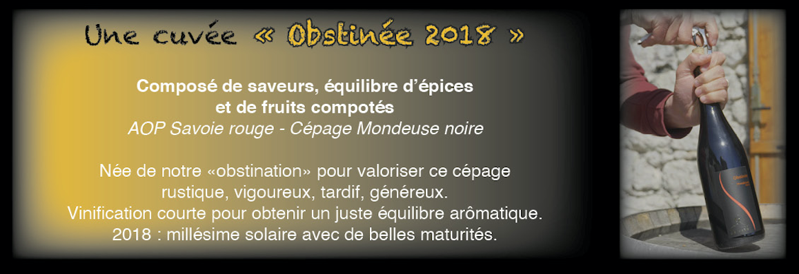 Obstinee-2018.png